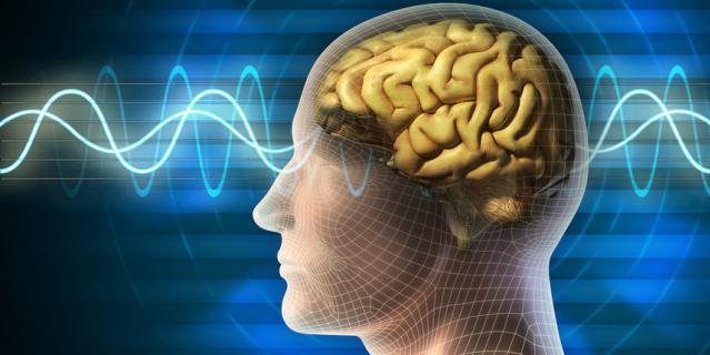 На лекции вы узнаете многое о работе мозга.
