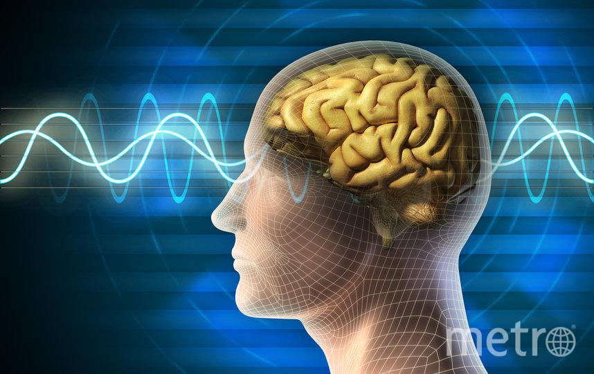 """На лекции вы узнаете многое о работе мозга. Фото depositphotos.com, """"Metro"""""""