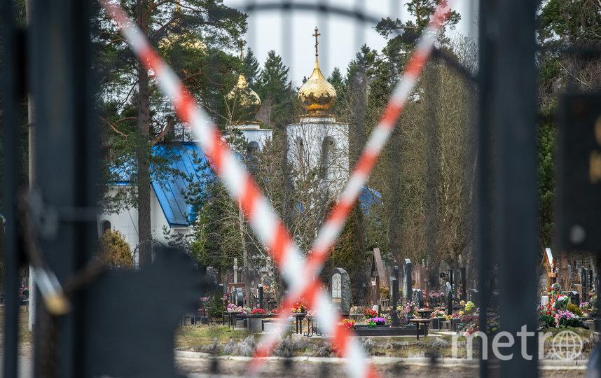 """Северное кладбище в Петербурге. Фото Святослав Акимов, """"Metro"""""""
