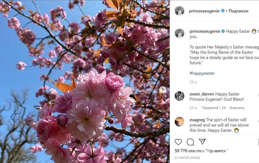 Поздравление принцессы Евгении. Фото instagram.com/princesseugenie