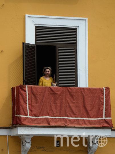 Выгуливают питомцев. Испания. Фото AFP