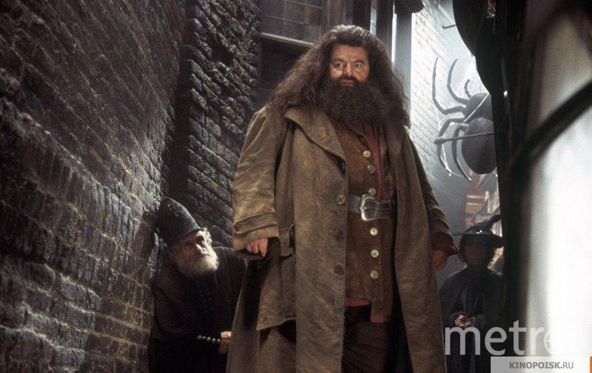 "Кадр из фильма ""Гарри Поттер и тайная комната"". Фото ""Каро-Премьер"", kinopoisk.ru"