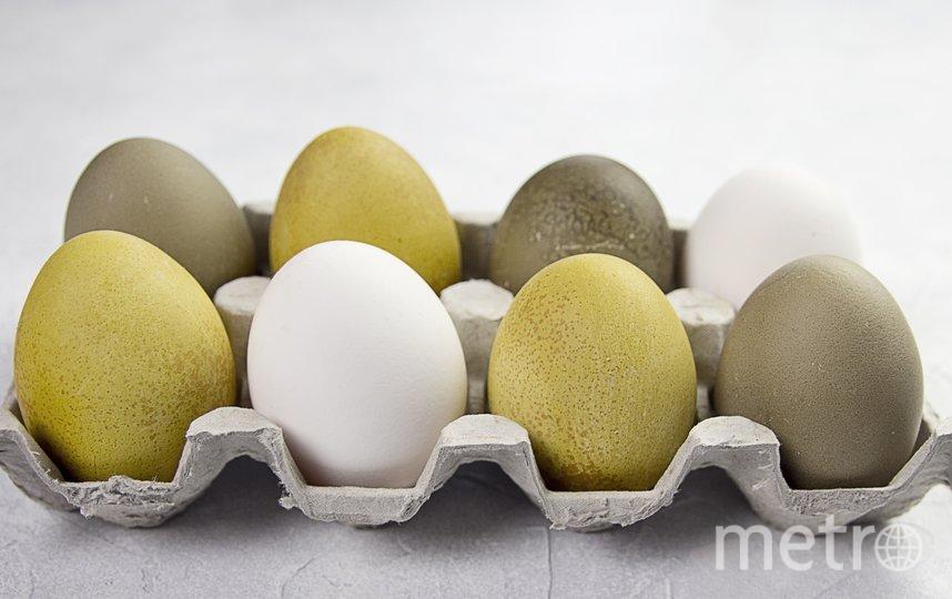 """Красим пасхальные яйца натуральными красителями. Фото Анна Тихонова, """"Metro"""""""