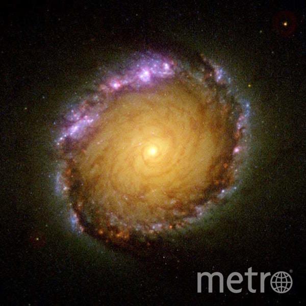 Со дня рождения в 1999 году пользователя Instagram @lorialight у NASA сохранился такой кадр со спиральной галактикой с перемычкой в созвездии Часы. Фото nasa.gov