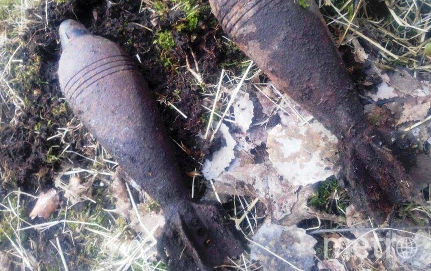 Найденные мины. Фото Пресс-служба ГУ Росгвардии