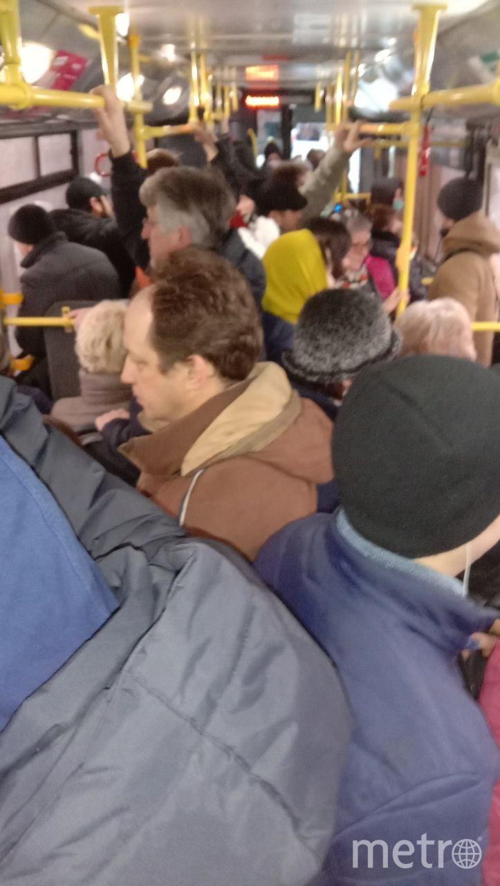 Фото очевидца из салона автобуса. Фото t.me/COVID19_SPb