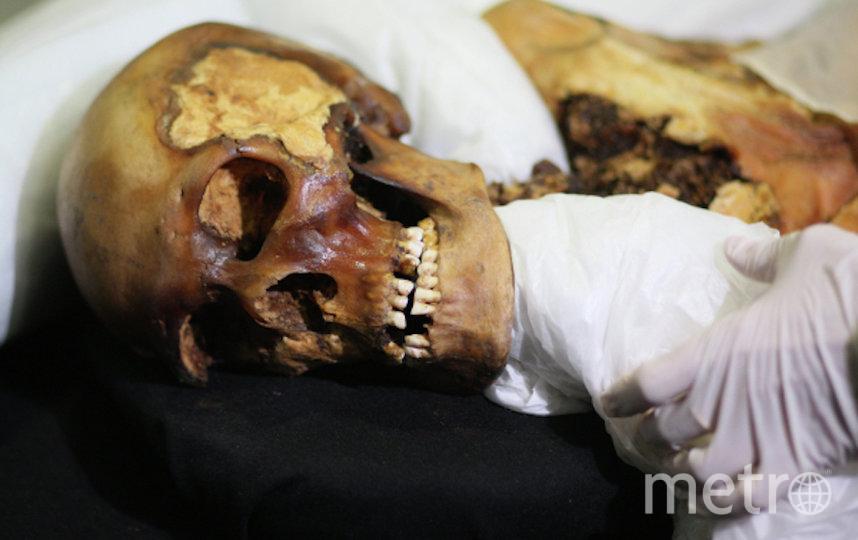 Мумия принцессы Укока хранится в музее в Горно-Алтайске. Фото РИА Новости