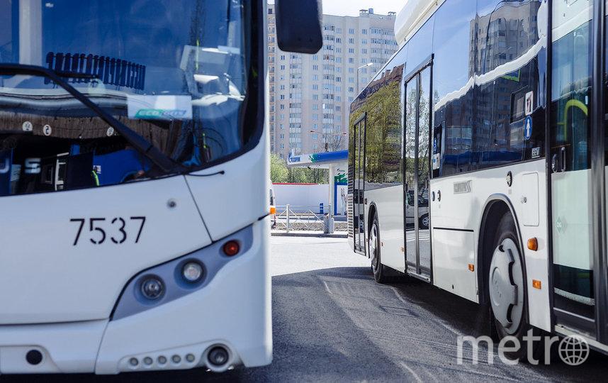 """Автобусные маршруты усилят. Фото СПб ГУП """"Пассажиравтотранс"""""""