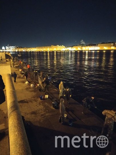 Ночная рыбалка на набережной Невы. Фото ДТП и ЧП / Санкт-Петербург /vk.com/spb_today, Лариса Суворова., vk.com