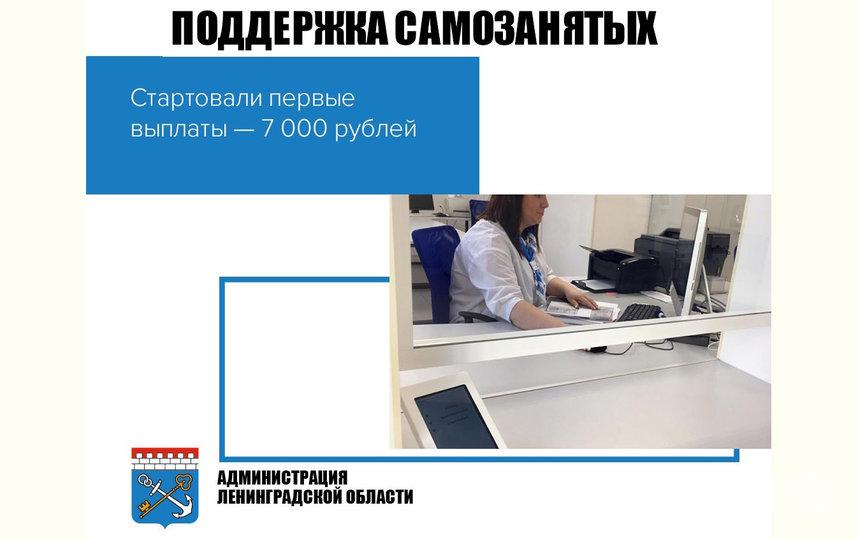 Самозанятым и безработным окажут поддержку. Фото lenobl.ru