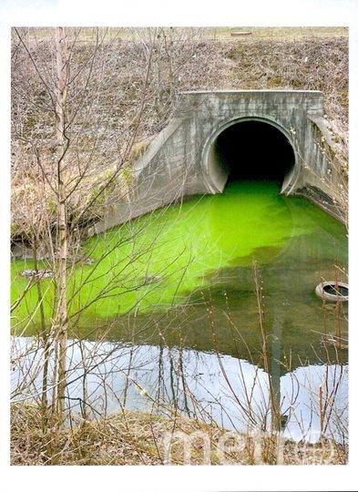 Зеленая вода в Лиговском канале. Фото 78.rpn.gov.ru