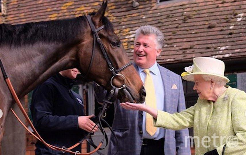 Королева Елизавета II также любит лошадей и была хорошим наездником. Фото Instagram @theroyalfamily