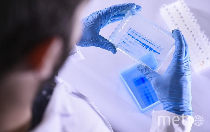 Гены могут быть разными по восприимчивости к коронавирусу. Фото Getty