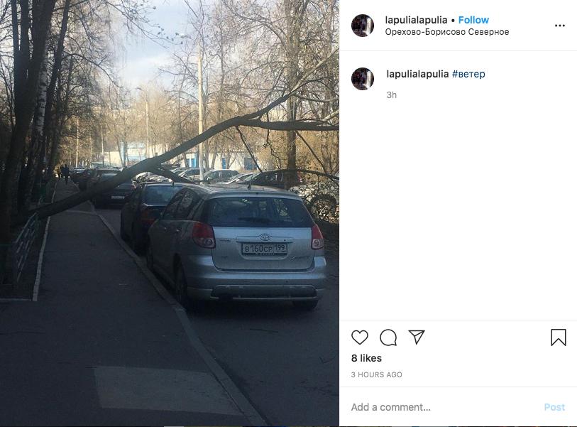 Последствия непогоды. Фото скриншот instagram.com/pyde8/?hl=ru