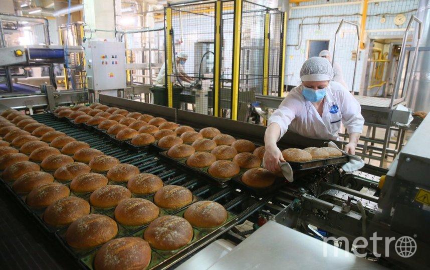 Перед заходом в производственный цех выдают защитный халат, шапочку и бахилы. Фото Василий Кузьмичёнок