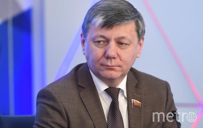 Дмитрий Новиков. Фото РИА Новости