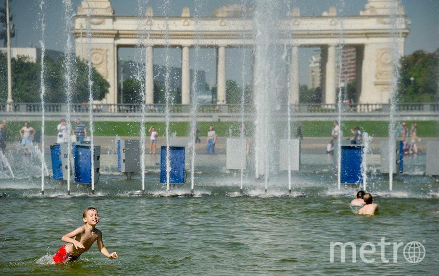 """В 2020 году климатологи предсказывают жаркое лето. Фото Агентство """"Москва"""""""