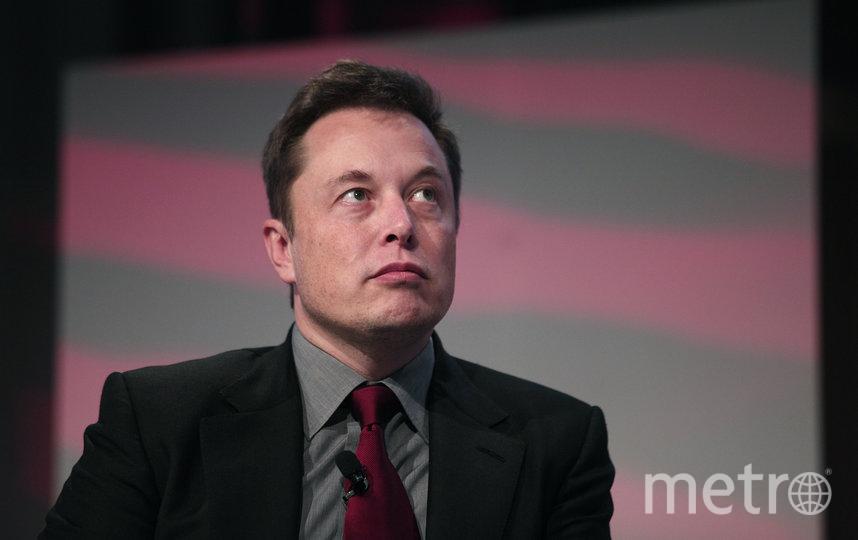 Илон Маск уже не первый раз хочет нарушить закон. Фото Getty