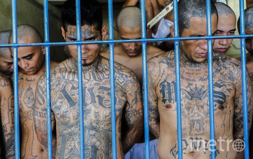 Заключённые за решёткой. Фото AFP