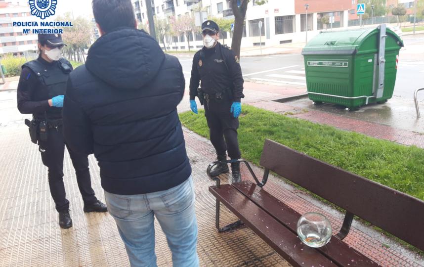 Полицейские задерживают хозяина рыбки. Фото Twitter @policia