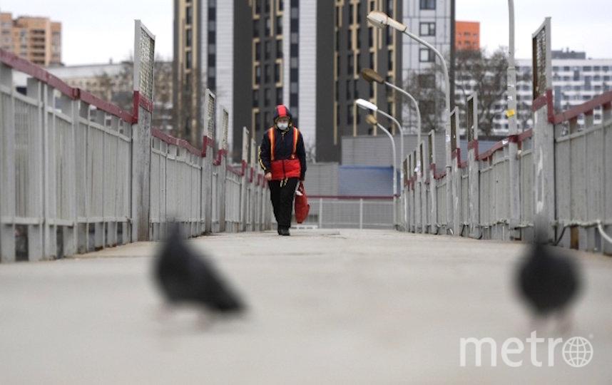 Режим самоизоляции в Подмосковье. Архивное фото. Фото РИА Новости