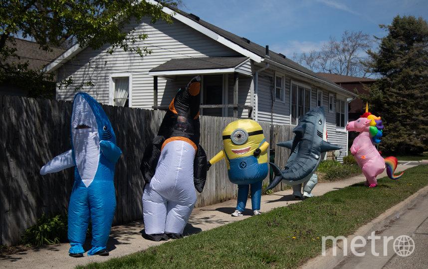 Команда динозавра на прогулке. Фото AFP