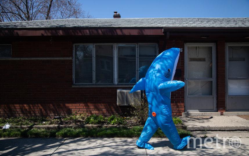 """""""Надувные"""" друзья обитают в американском городе Ферндейл, штате Мичиган. Фото AFP"""