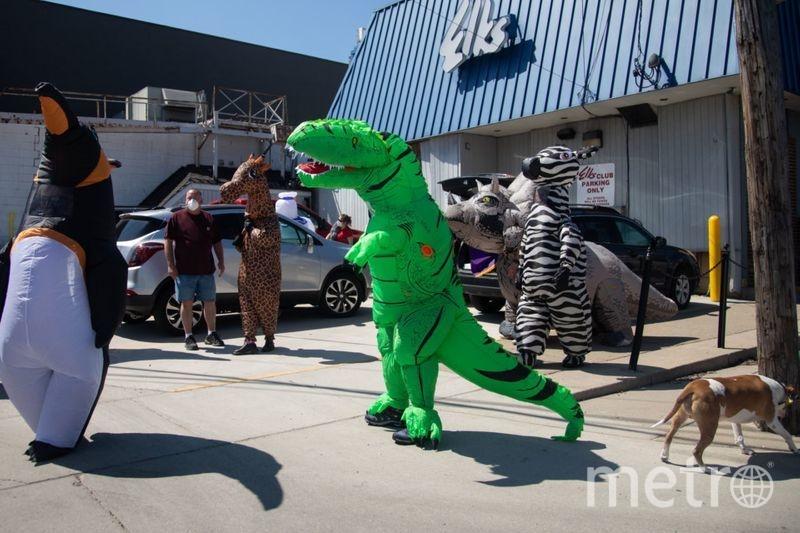 Динозавр Рекс не одинок, у него есть друг. Он тоже тираннозавр, только зелёного цвета. Фото AFP