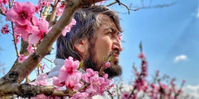 Камал Салманов (Дагестан, село Миатли) на цветение персиков любуется без гостей и туристов, но есть их надеется уже с ними.