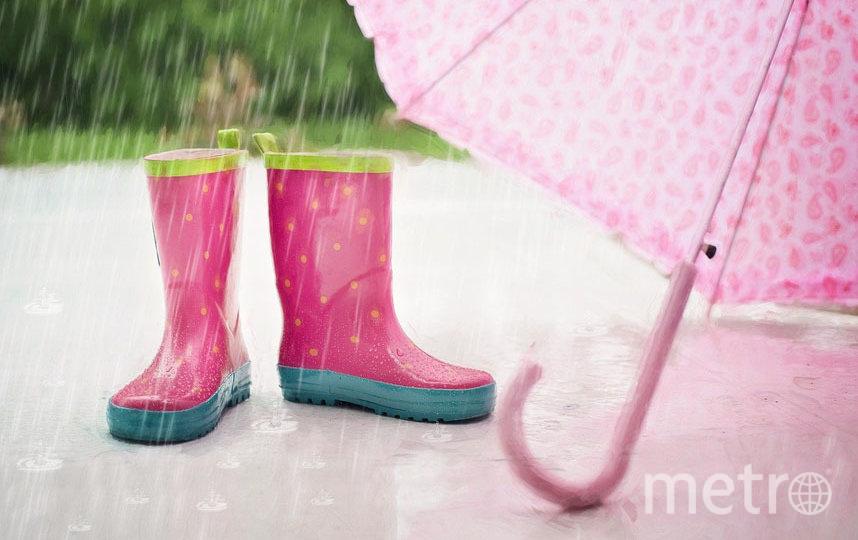 Дожди будут кратковременными. Фото Pixabay