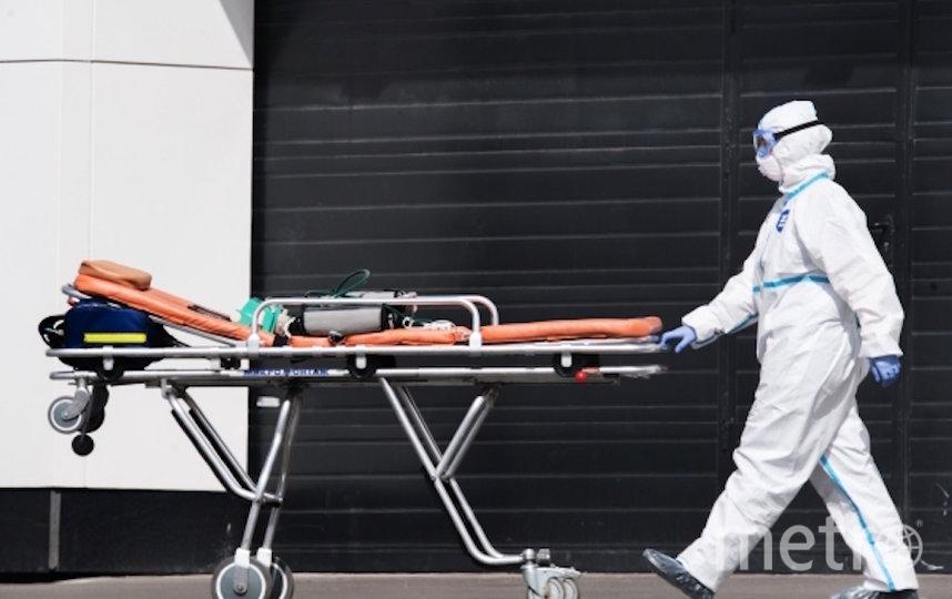 Медик карантинного центра в Коммунарке везет носилки для пациента, доставленного в центр скорой помощью. Фото РИА Новости