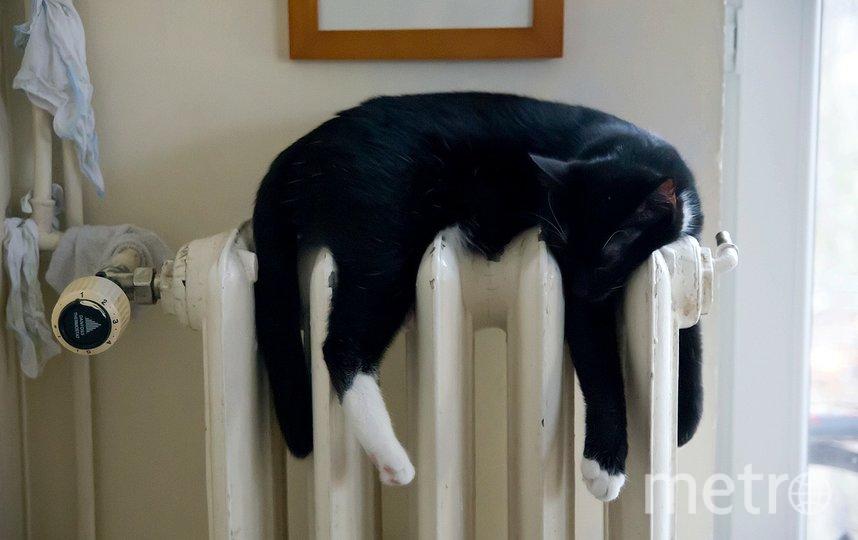 В Петербурге усилили контроль за отоплением из-за похолодания. Фото pixabay.com