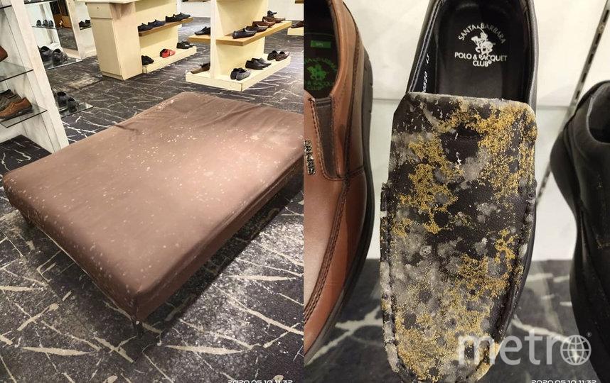 Кроме обуви и аксессуаров, плесень покрыла также и мебель в торговых залах. Фото facebook.com/Nex001
