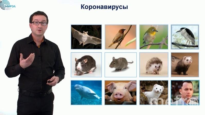 Николай Никитин. Фото Скриншот Youtube