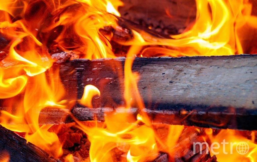 """Дети узнают, почему и как горит огонь. Фото pixabay.com, """"Metro"""""""