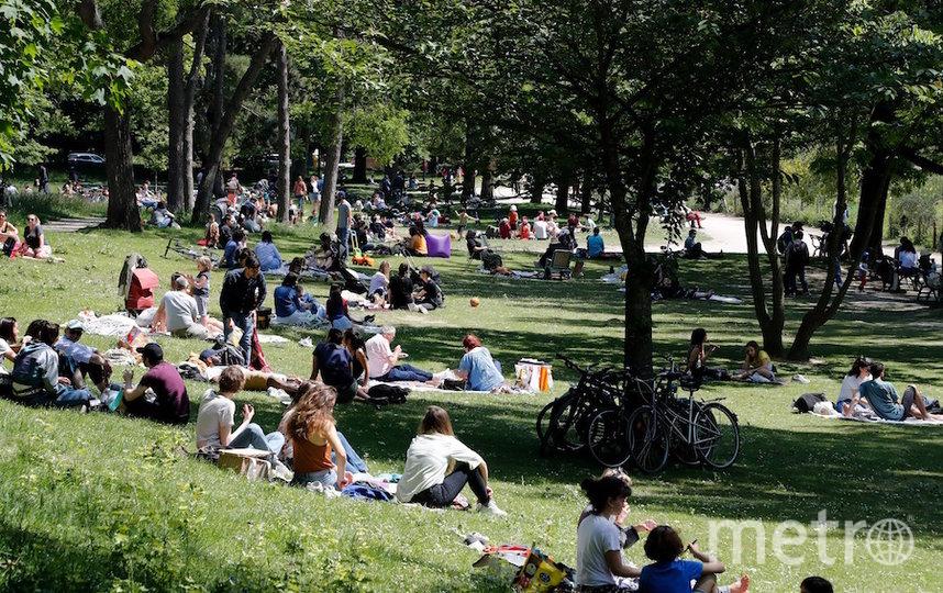 Парк в Париже. Фото AFP