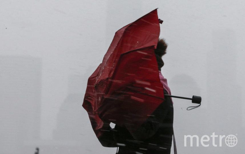 Дожди не покидают Петербург. Фото Getty