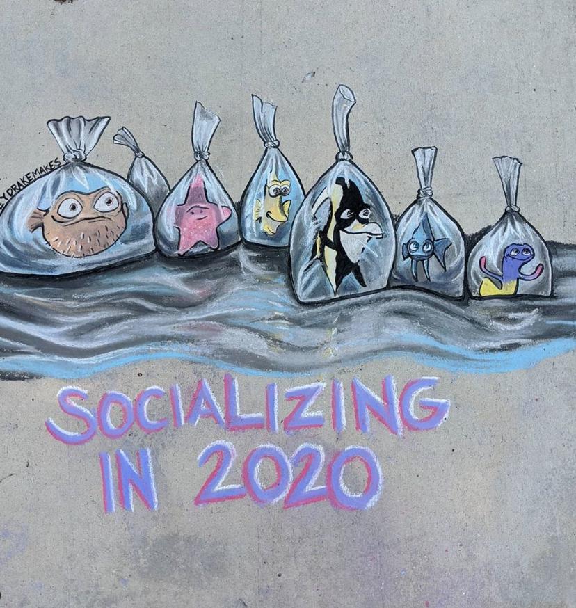 """Общение в 2020 году Кейси Дрейк показала на примере сцены из """"В поисках Немо"""". Фото Instagram @caseydrakemakes"""