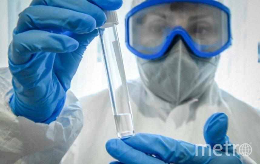 Москвичам будет доступна полная расшифровка анализа на коронавирус. Фото РИА Новости