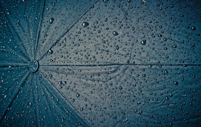 Май в Москве будет дождливым и холодным. Фото Pixabay