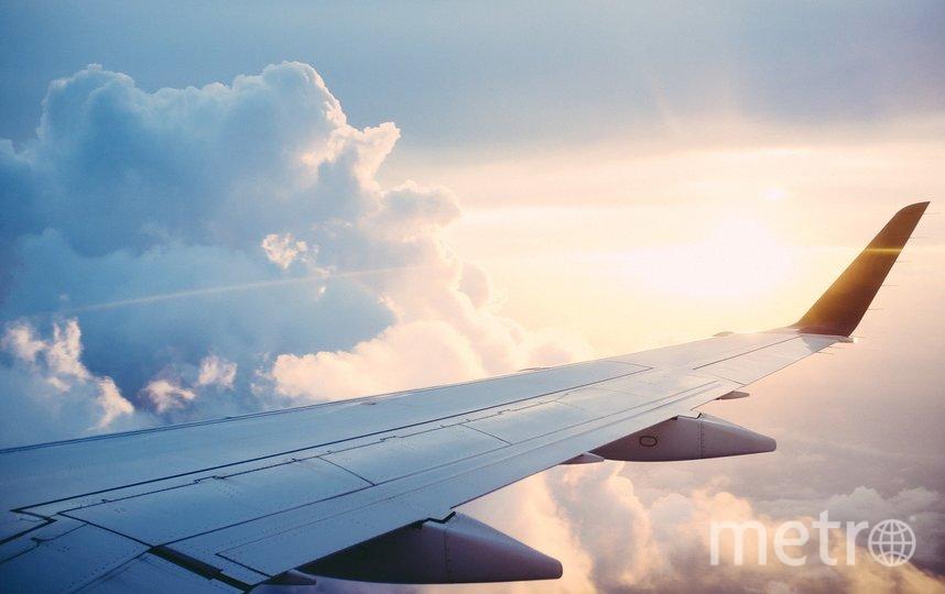 Крыло самолёта. Фото pixabay.com.
