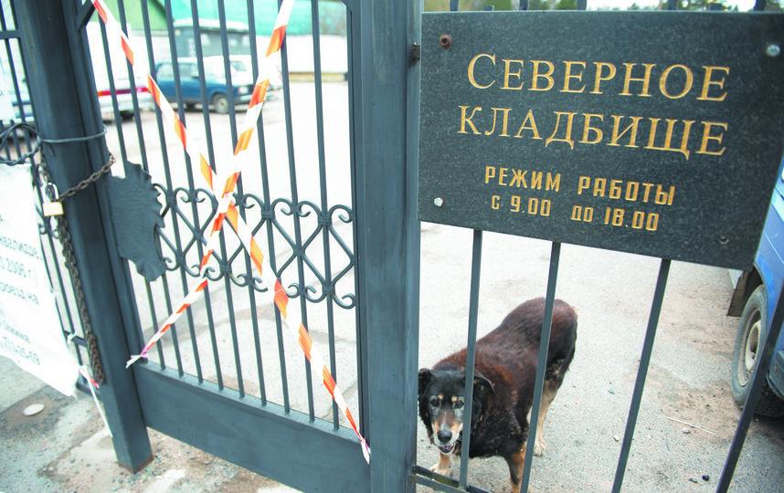"""Пускают только хоронить и лишь по несколько человек. Фото Святослав Акимов, """"Metro"""""""
