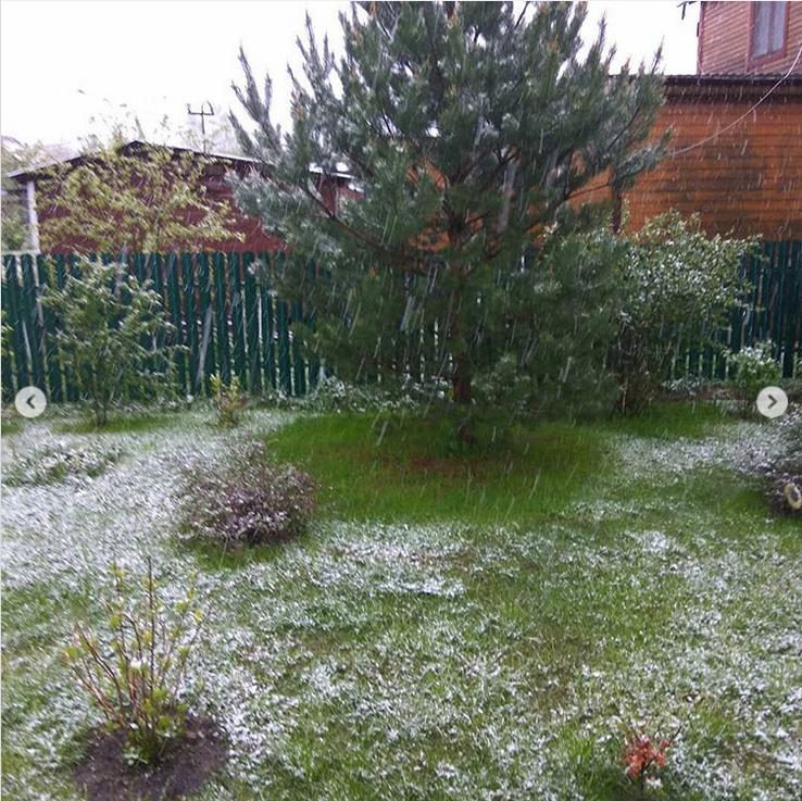 "21 мая 2020 год. ""Здравствуйте. А у нас на даче снег идёт, а у вас?"" Фото Instagram: @aleksandrafabrina"