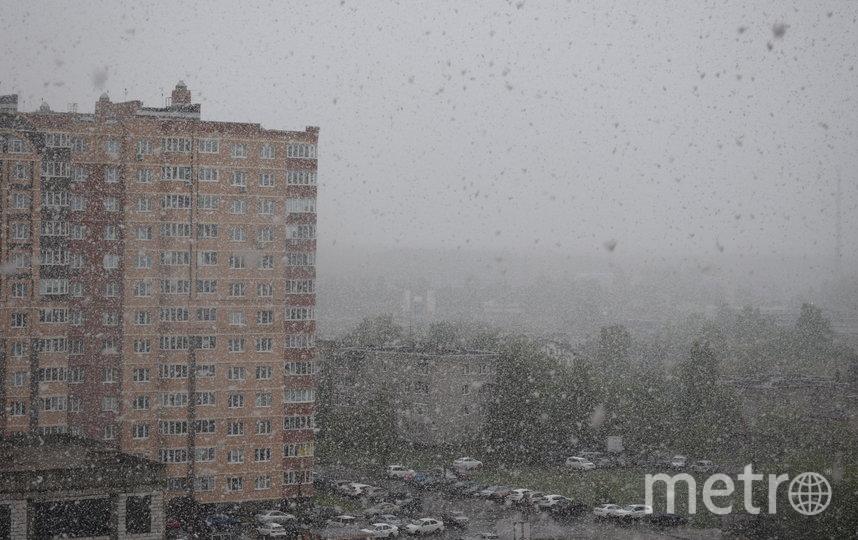 """Снег в Щелково. 21 мая 2020 год. Фото """"Metro"""""""