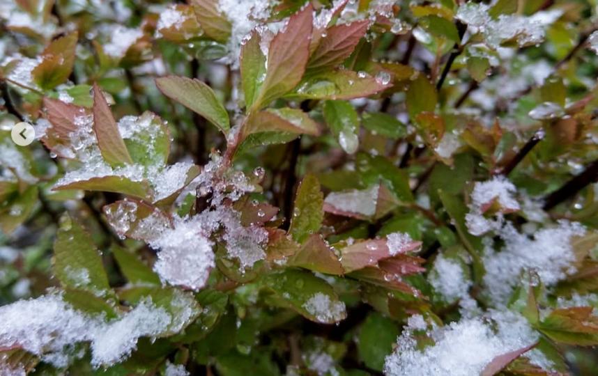 Снег. Сергиев Посад. Фото Instagram: @sergievhram