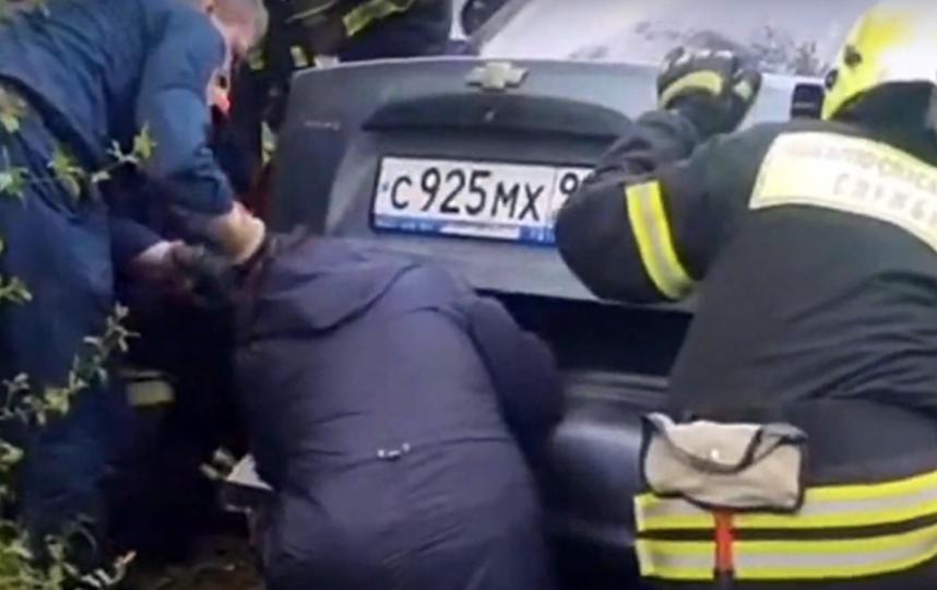 Спасатели освободили алабая из закрытого багажника легковушки. Фото Скриншот Instagram @zelenograd_news.ru