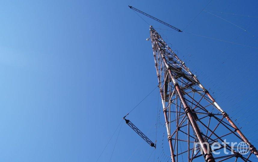 """В майские праздники Tele2 зафиксировала врайонах Ленобласти рост потребления data-услуг. Фото """"Metro"""""""