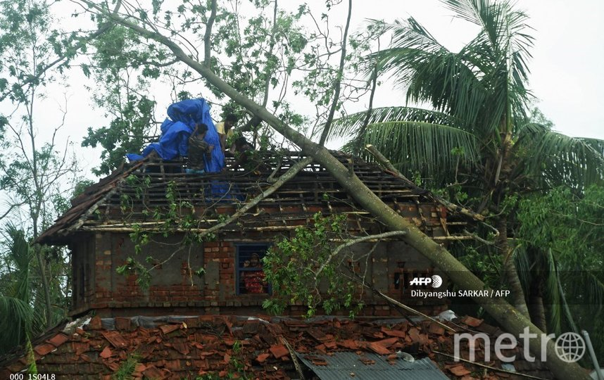 Многие дома были разрушены из-за повалившихся на них деревьев. Фото AFP