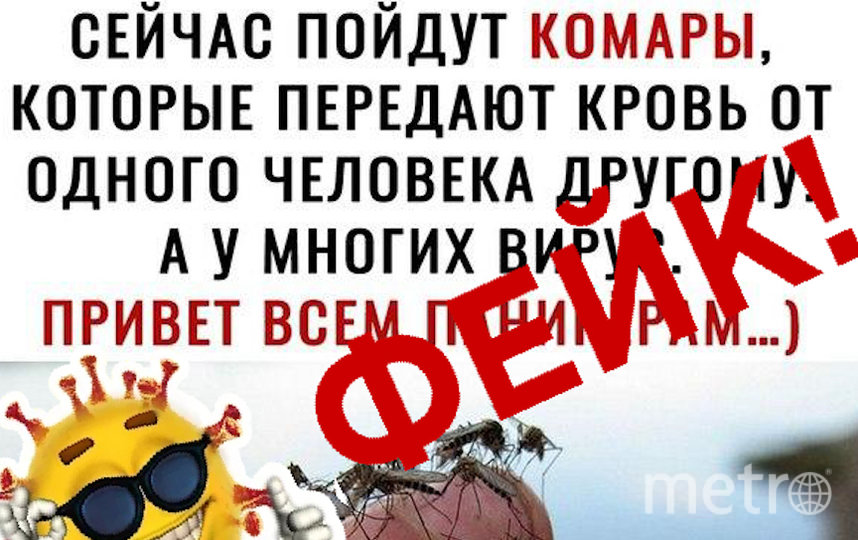 Фейки о коронавирусе: комары идут в атаку. Фото скриншот: coronafake.ru