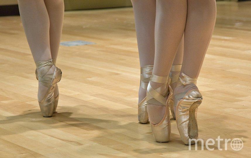 """Вы научитесь разбираться в балете. Фото pixabay.com, """"Metro"""""""